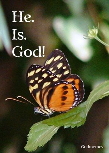 He.Is
